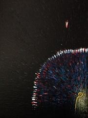 Dictator – 58x75 cm